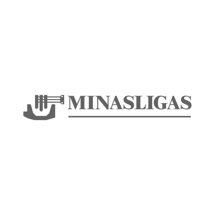 LOGO_MINASLIGAS